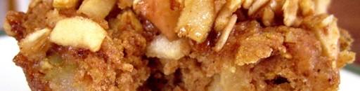 Diabetic Friendly Apple Cinnamon Muffins