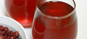 Holiday Fresh Cranberry Apple Spiced Cider